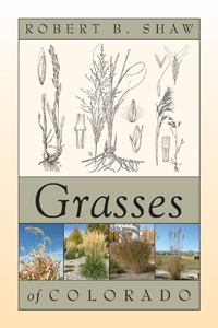 Grasses of Colorado
